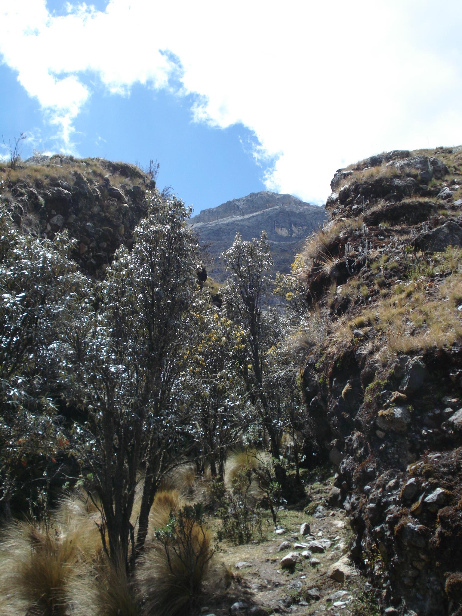 Huaraz Cuzco 113
