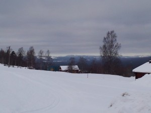 I don't have any picture related to the preceding paragraph, so enjoy the Dalarna countryside in its overcast beauty